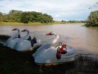 Turistas de Manaus em CZS (4)